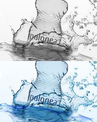 Project polonea